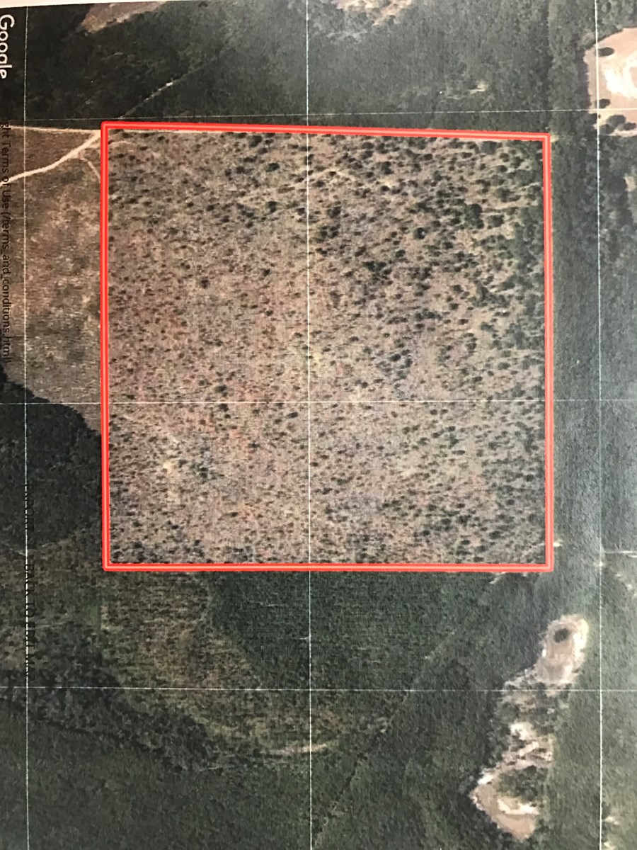 Hunting land for sale in Washington county, FL