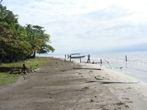BEACHFRONT LOTS, CAYO DE AGUA, BOCAS DEL TORO, PANAMA