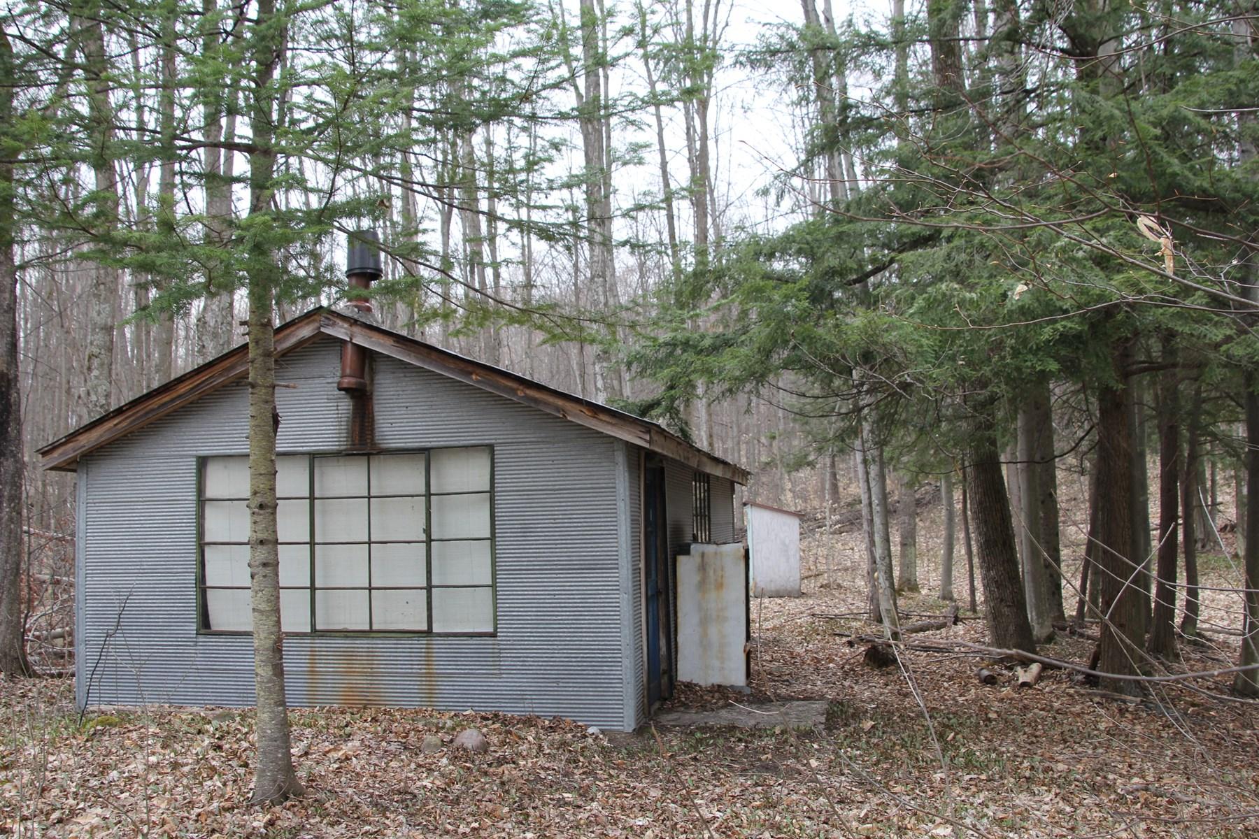 Vacant Land - 40 Acres For Sale Atlanta Michigan