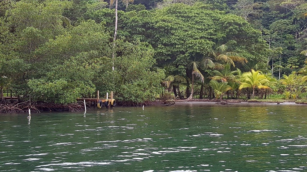 Titled ridge top lot  on Isla Solarte, Bocas del Toro Panama