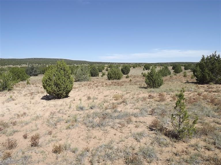 10 Acres In Torrance County New Mexico For Sale