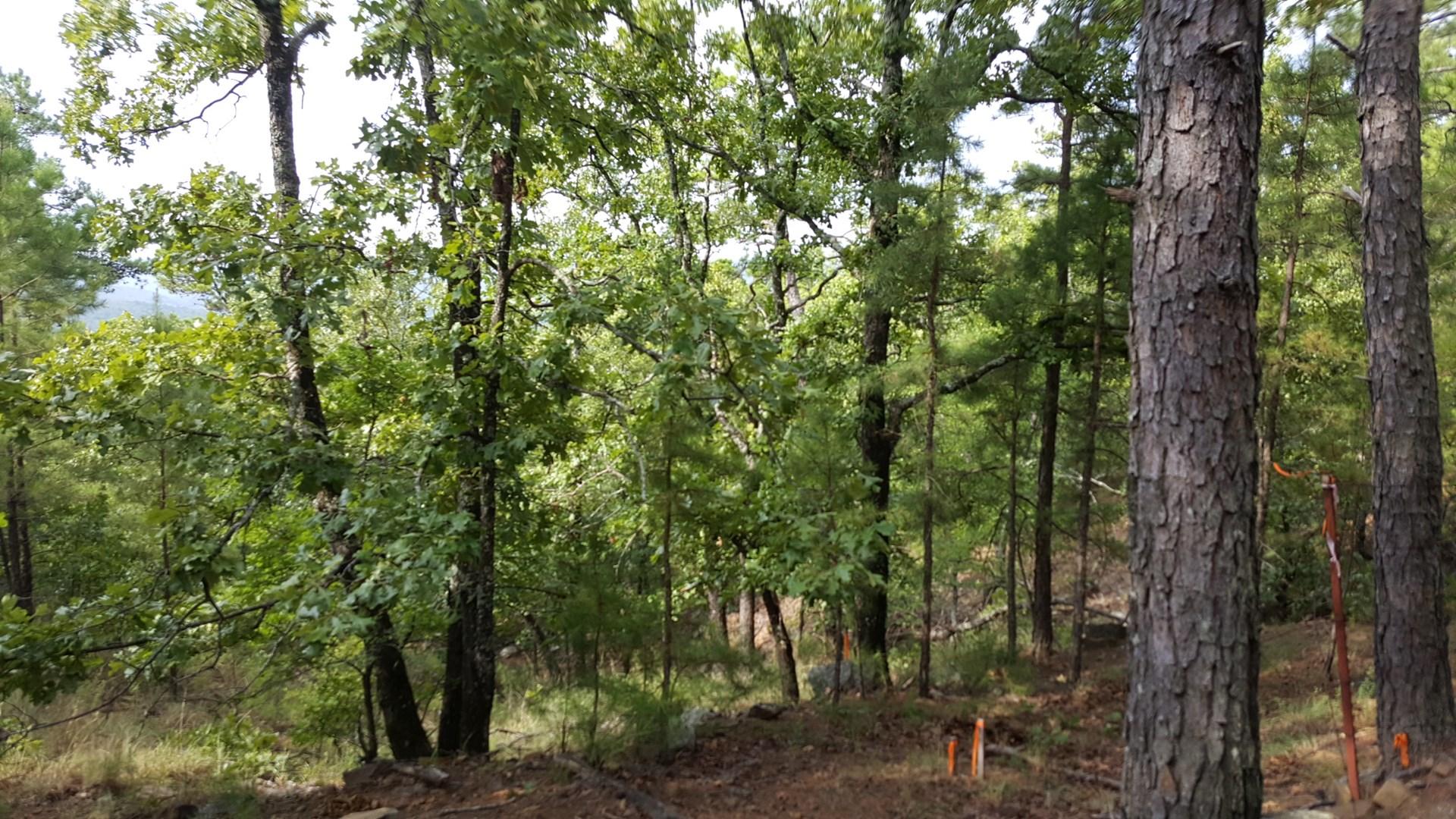 70± Acres for Sale on Round Mountain - Wister, Oklahoma