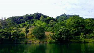 200 FEET OF WATERFRONT ON THIS TIERRA OSCURA, PANAMA LOT