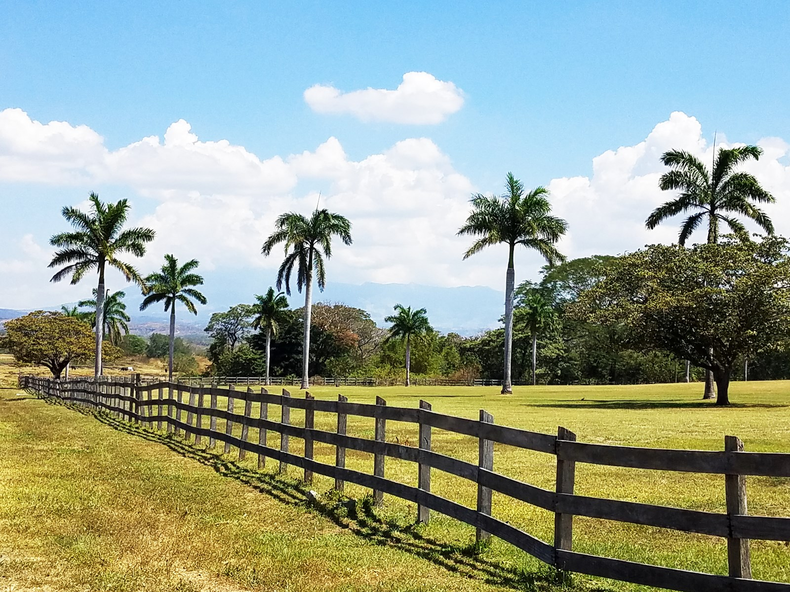 Costa Rica farm/ranch real estate for sale Michael Krieg