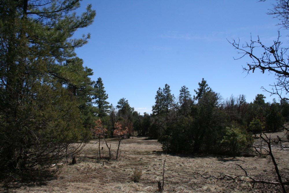 Land For Sale Near Lake Northern NM Great Building Site