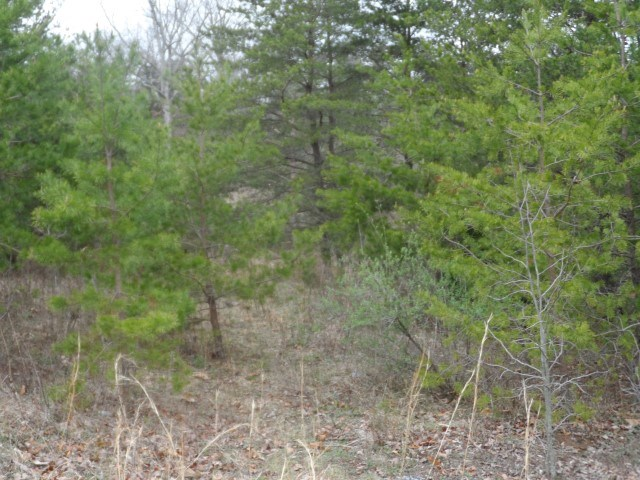 Land For Sale in Hedgesville, WV