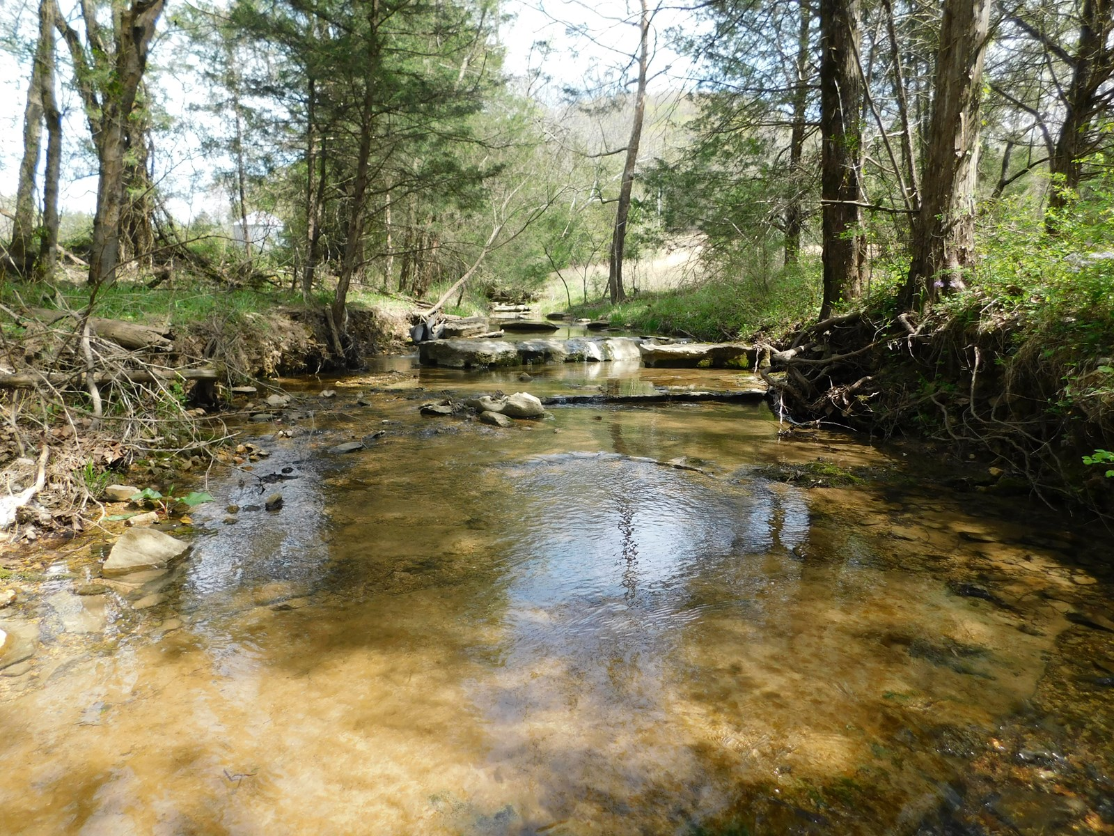 TN LAND WITH HOME, CREEKS, PASTURE, HUNTING, TIMBER & VIEWS