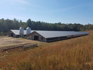 POULTRY FARM IN ALEXANDER COUNTY, TAYLORSVILLE NC