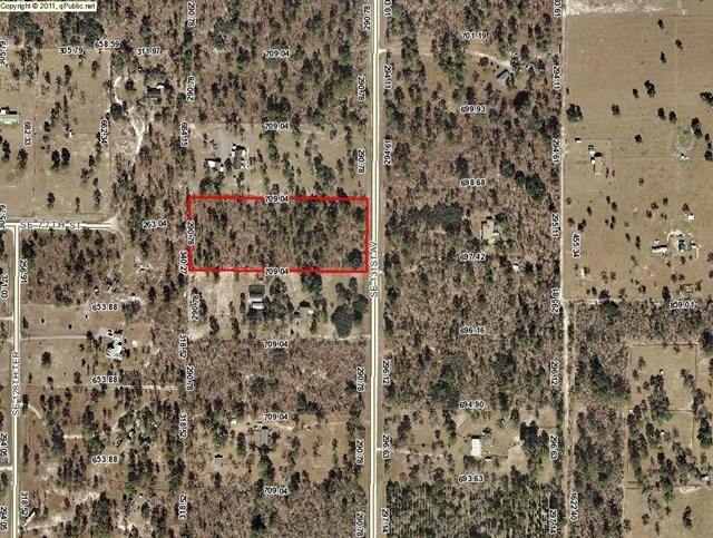 NORTH CENTRAL MORRISTON FLORIDA EQUESTRIAN COMMUNITY 5 ACRES