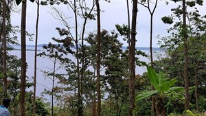 COMMANDING OCEAN VIEWS  TITLED 4 ACRES FROM MAIN ROAD TO SEA