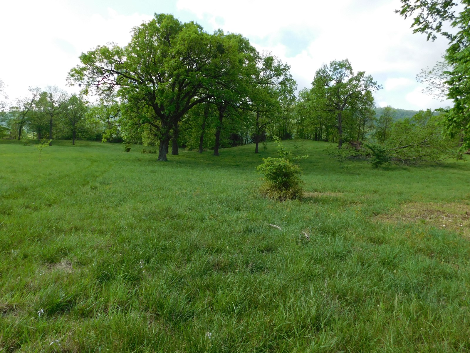 LOT 2 | ARKANSAS OZARK MOUNTAINS | NEWTON COUNTY | PROPERTY