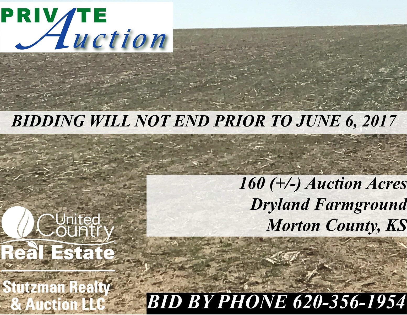 160 ACRES OF DRYLAND FARMGROUND   MINERAL RIGHTS FOR SALE