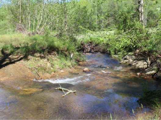 Land for sale in Lowgap NC - Hunting and Recreational Land
