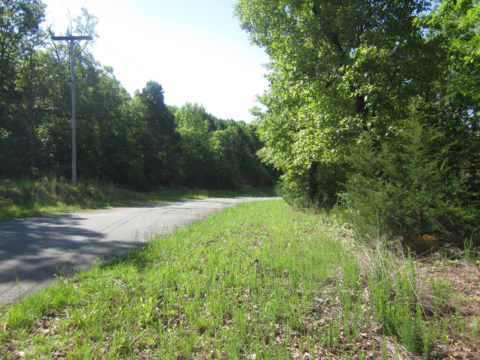 BUILDABLE  LOT NEAR BULL SHOALS LAKE IN TOWN OF BULL SHOALS!