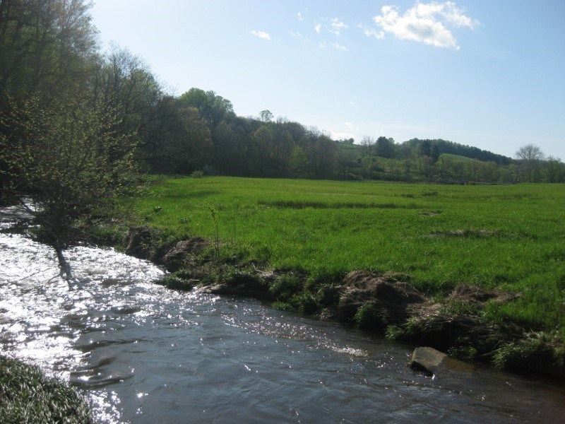 Land for Sale in Floyd VA with River Frontage!