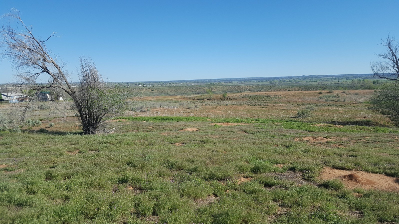 Land For Sale Cortez CO, Muti-family or PUD land