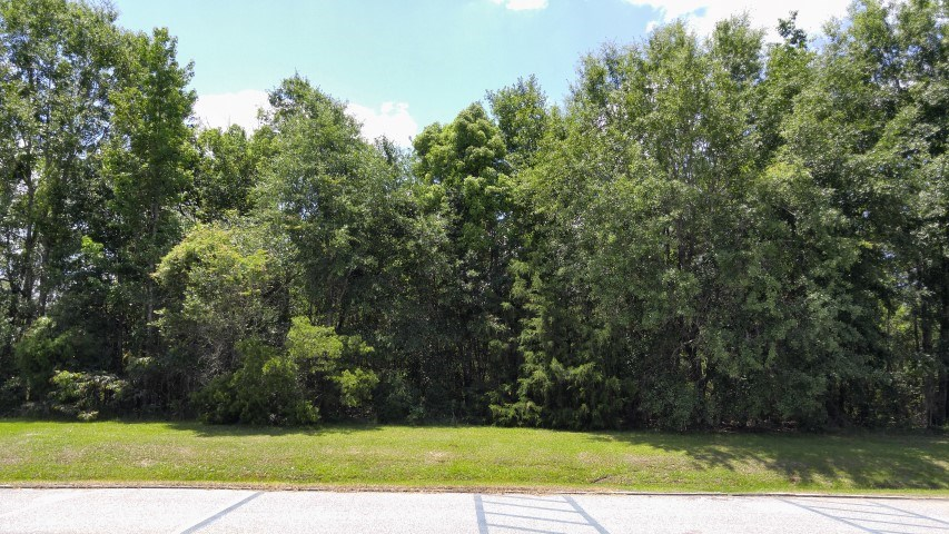 Vacant land near Tallahassee, FL adjoins Veterans Park
