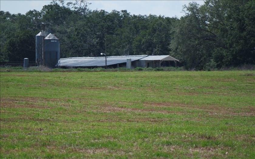 150 Acres Priced Right in Mayo, FL