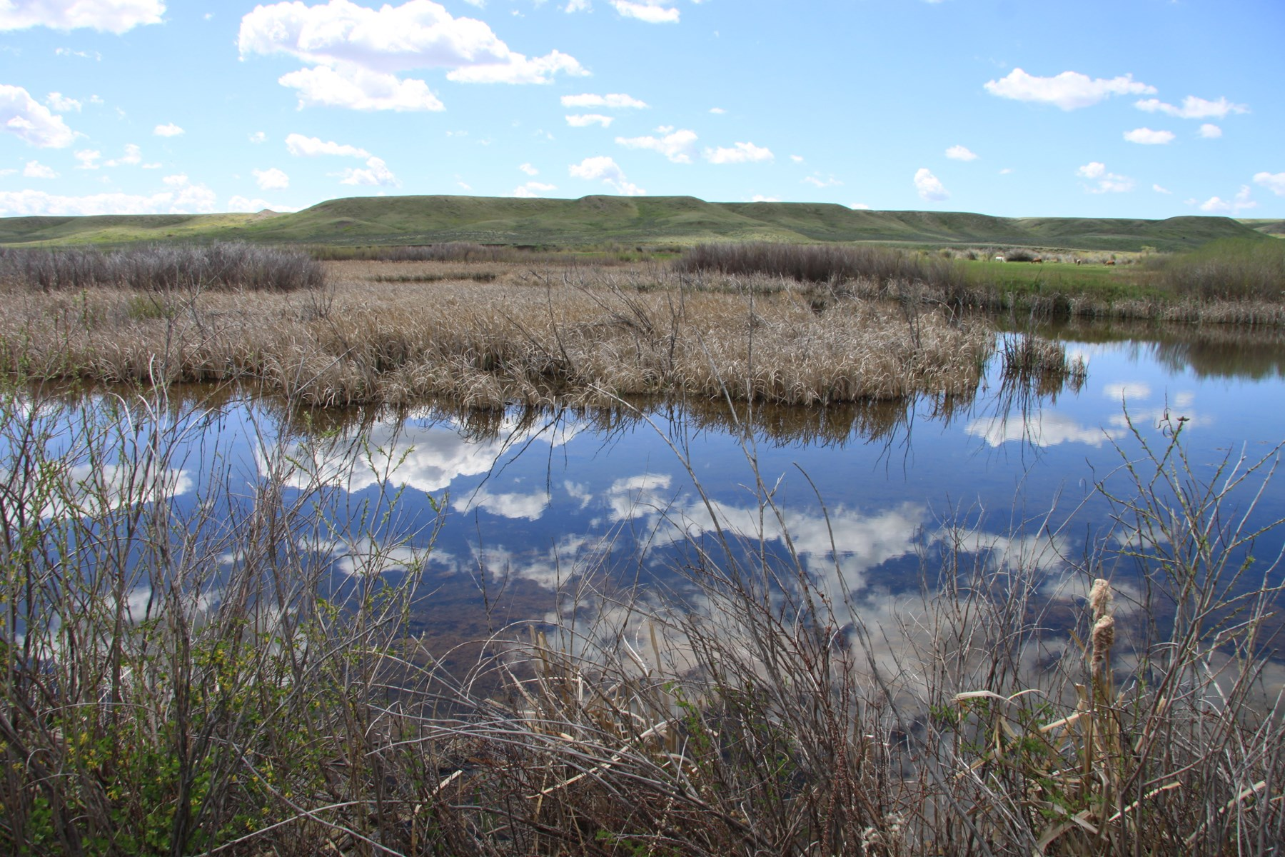 Central Montana Ranch For Sale Hunting Recreation