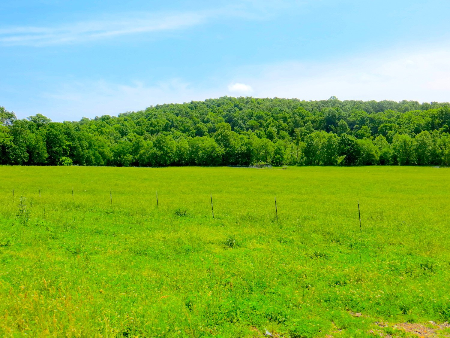 Farm For Sale with Creek For Sale near Spring River, AR
