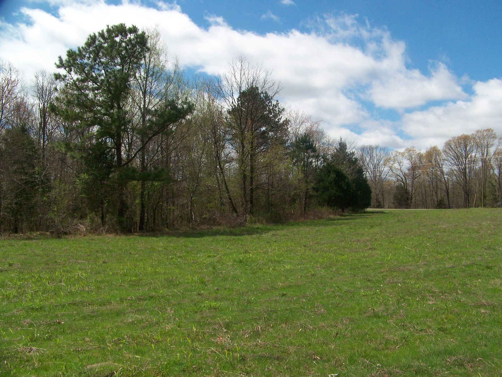 LG ACREAGE FOR SALE IN TN, HUNTING, PASTURE, WOODS