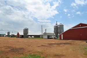 POULTRY FARM WITH ACREAGE FOR SALE IN NORTH EAST TEXAS