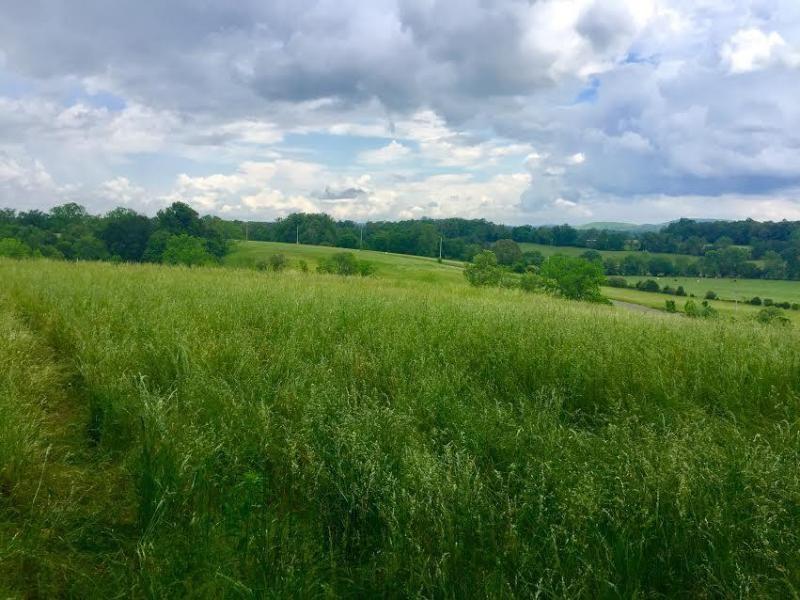 Land Cookeville TN, Putnam County