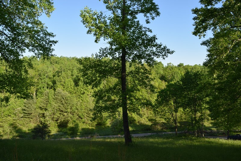Land Ready to Build On - Near the Town of Floyd VA!