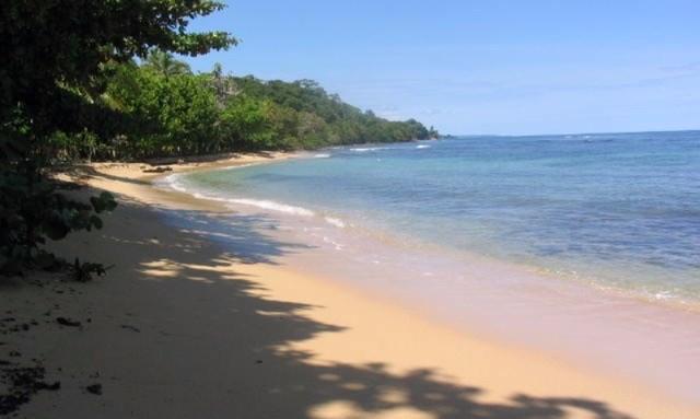 Titled Coastal Beachfront,Surfer's Paradise Bocas del Toro