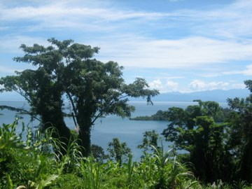 Pristine Bay and Jungle Property, Titled, Bocas del Toro
