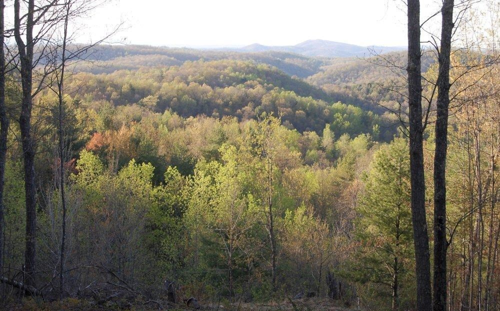 Wooded Hunting & Recreational Land in Shawsville VA!