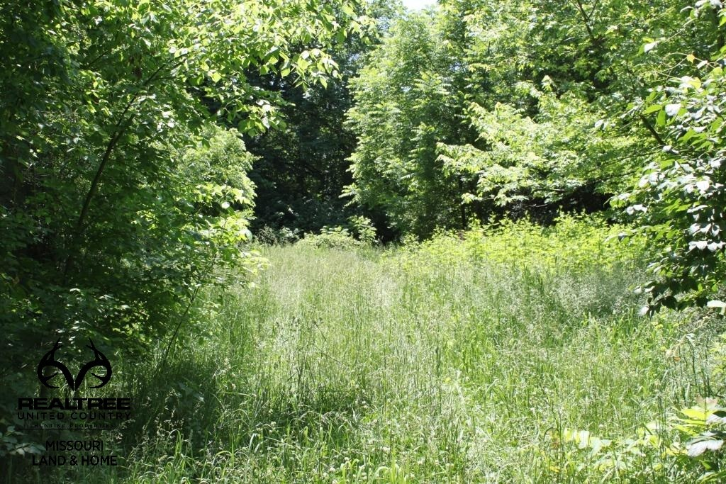 Recreational Country Home Site in St. Paul, MO for Sale
