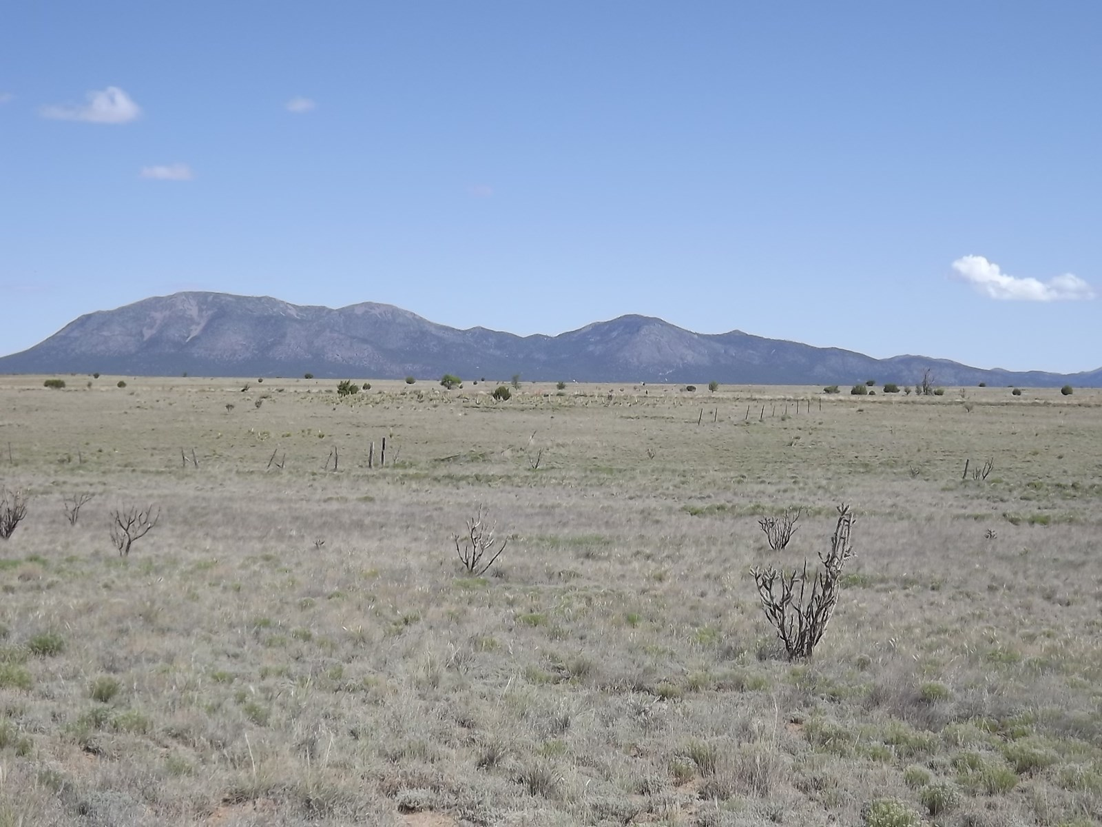 114 Acres of Grassland in Edgewood New Mexico For Sale