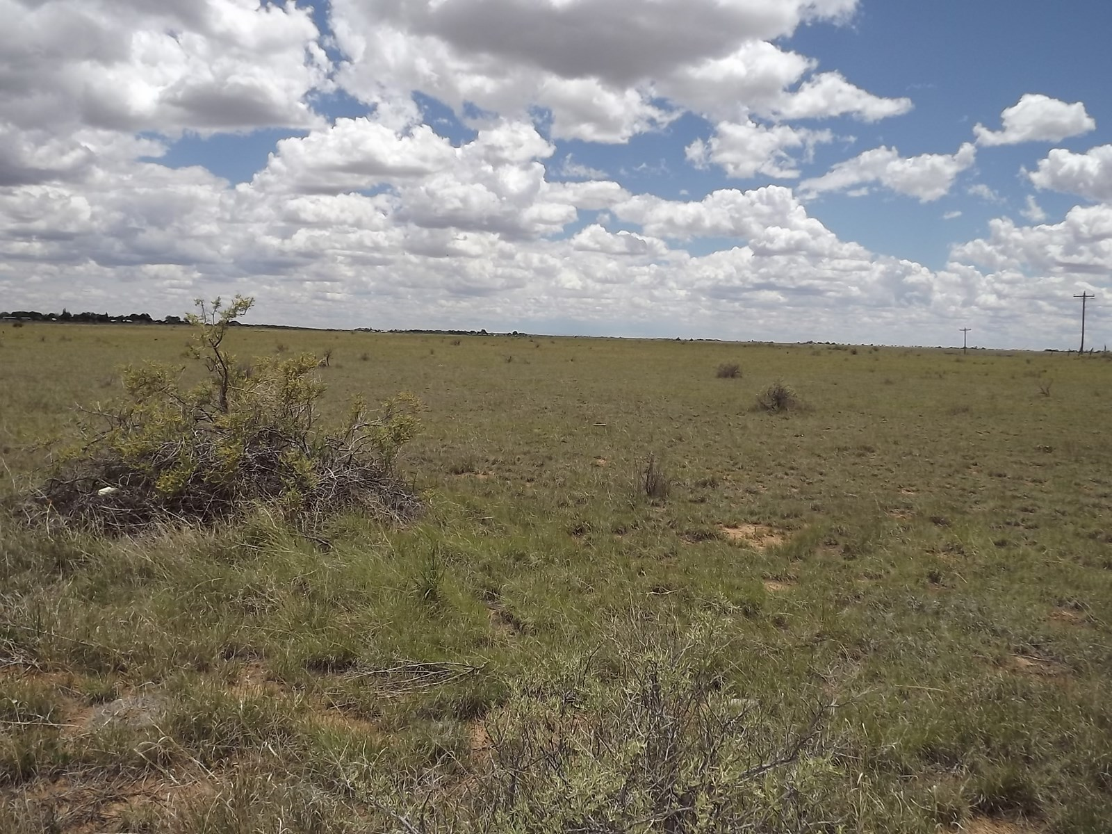 Development Opportunity 40 Ac  8 Lots For Sale Moriarty NM