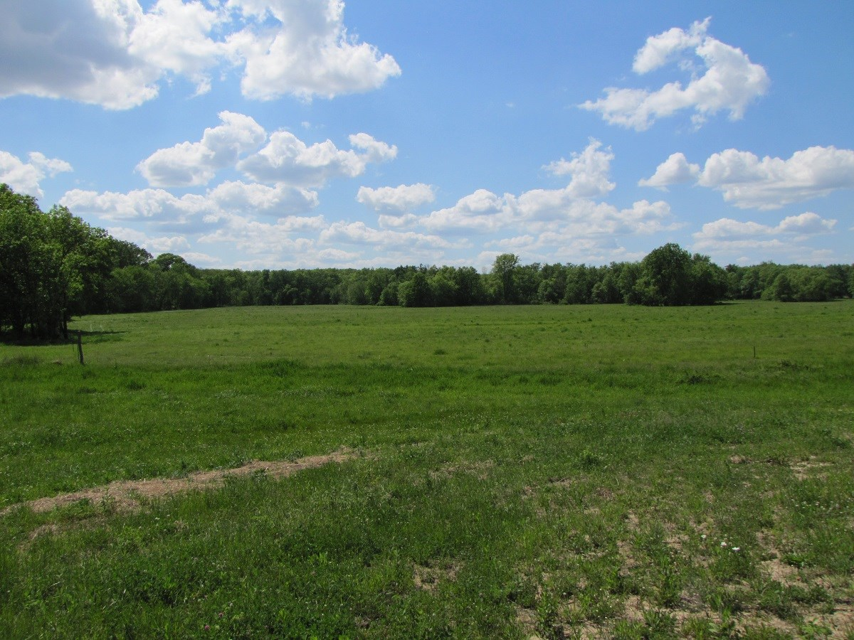 HUNTING W/INCOME FARM FOR SALE NE MISSOURI, COMBO FARM MO