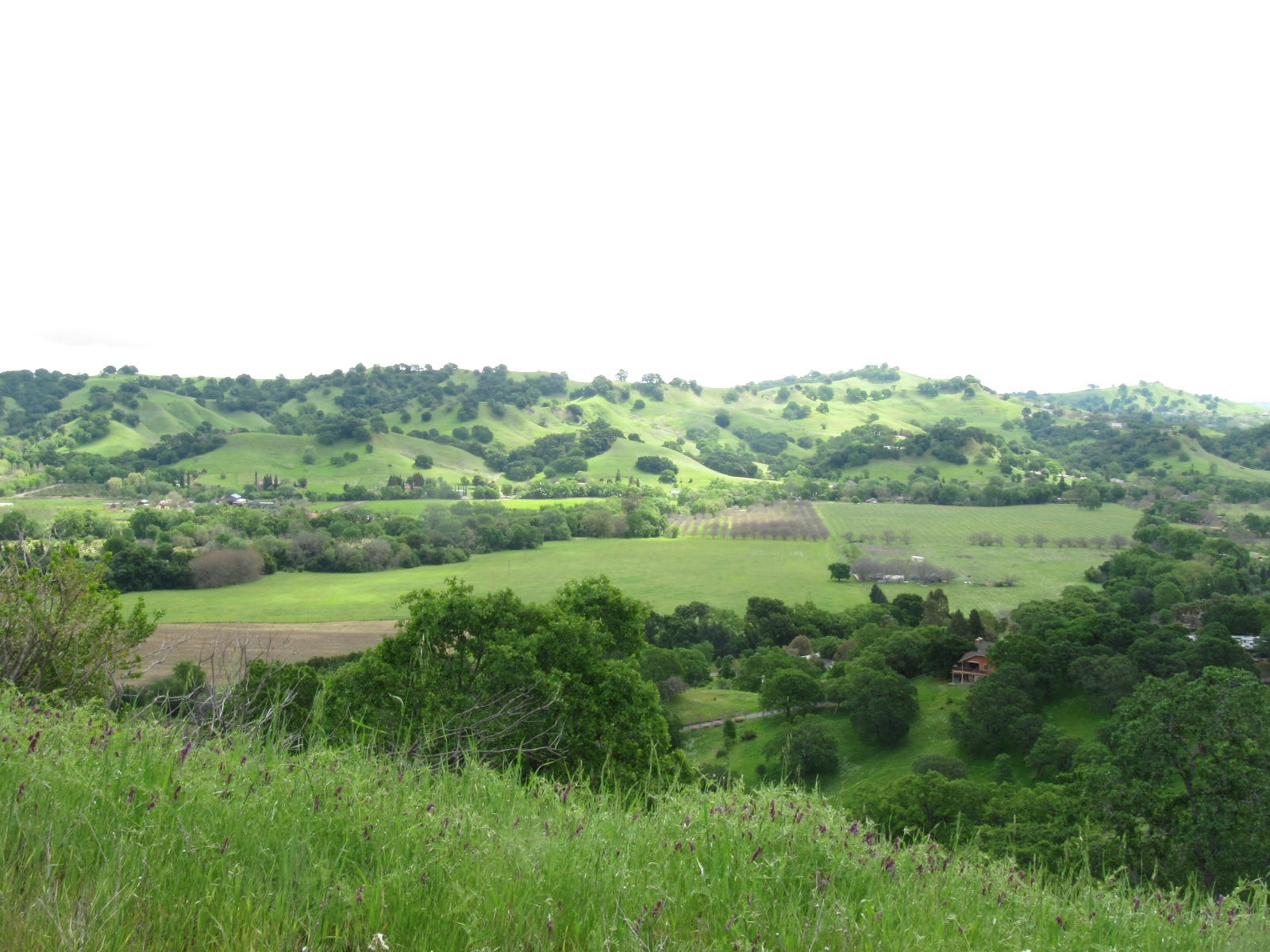 Vacaville, Solano County Lot For Sale - Build Dream Home