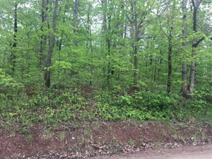 HUNTING LAND IN SOUTHEAST OHIO