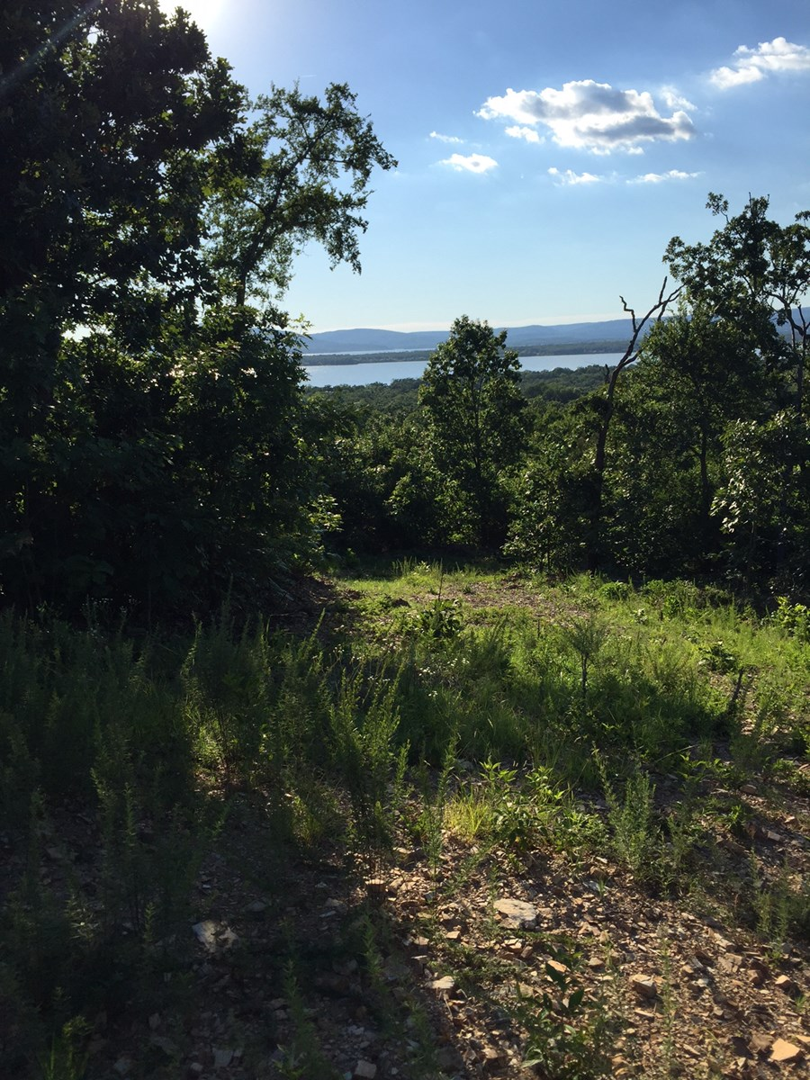 BUILDING LOT FOR SALE GREAT VIEWS LAKE SARDIS CLAYTON,OK