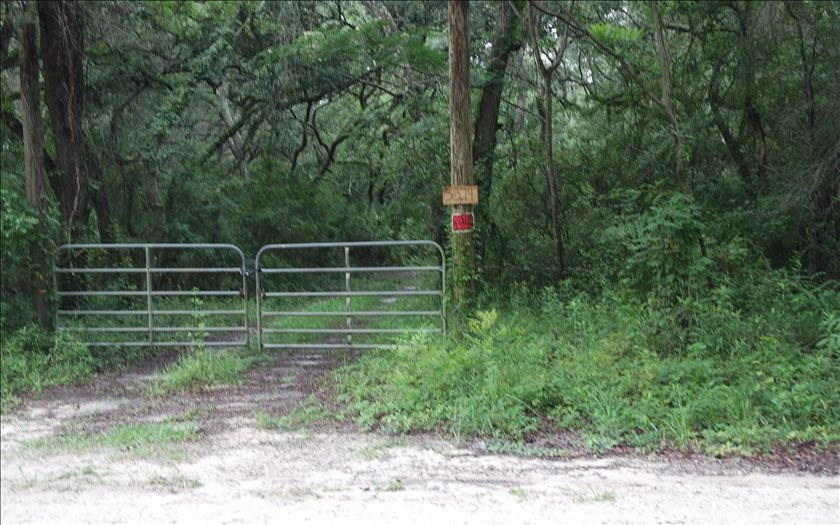 Very Private 20 Acres in North Florida