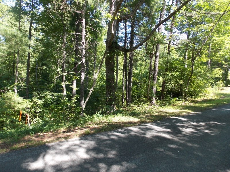 Wooded Land and Building Site for Sale in Ferrum VA!