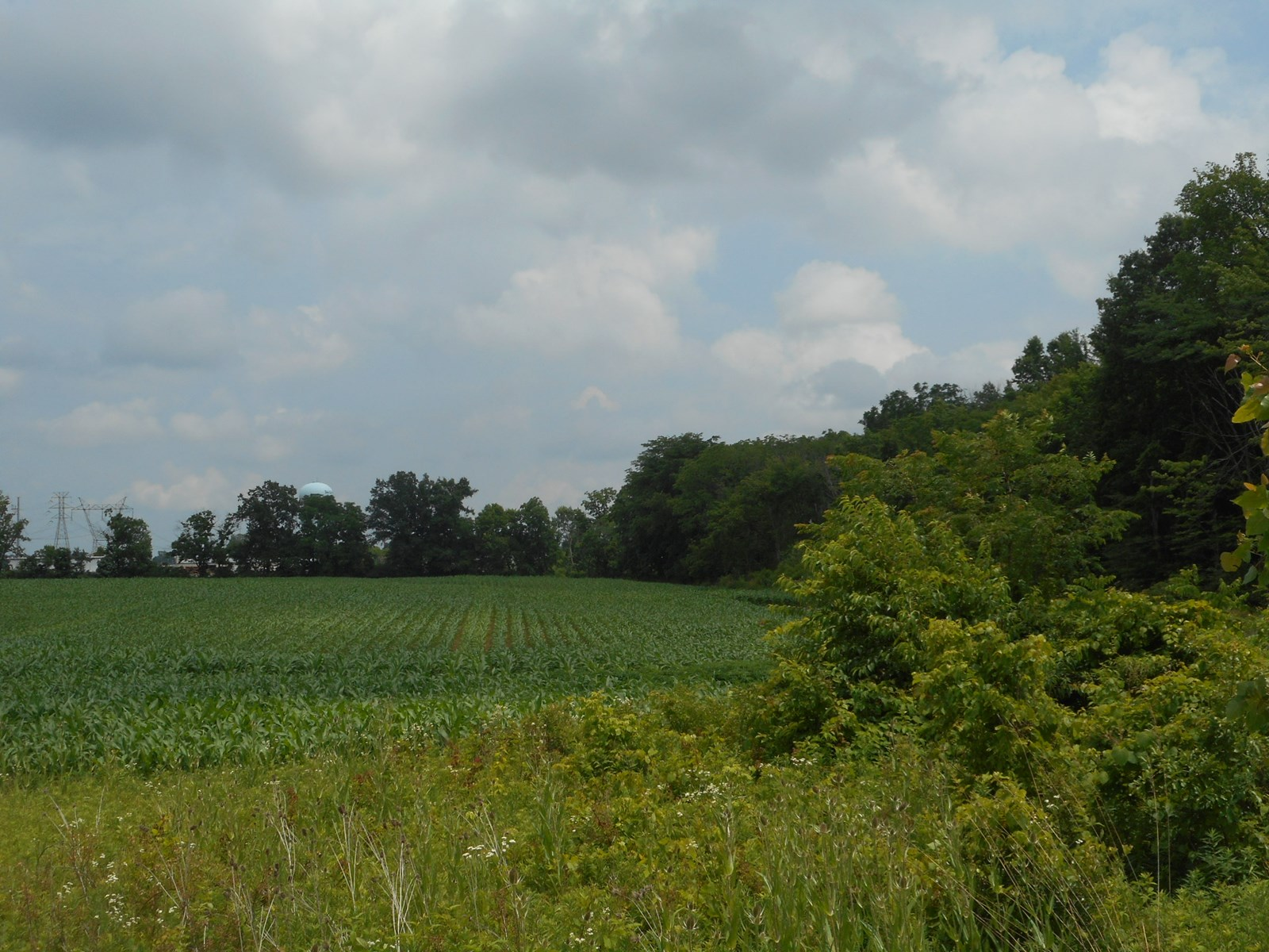 Commercial Land For Sale,  Delaware County, OH  SR 36/37