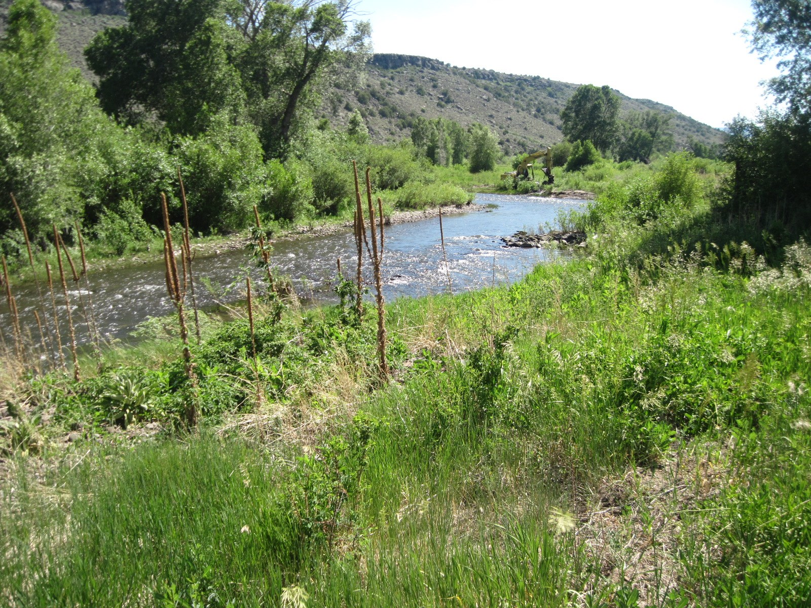 Great Mountain Property in Los Pinos NM w/ Water rights