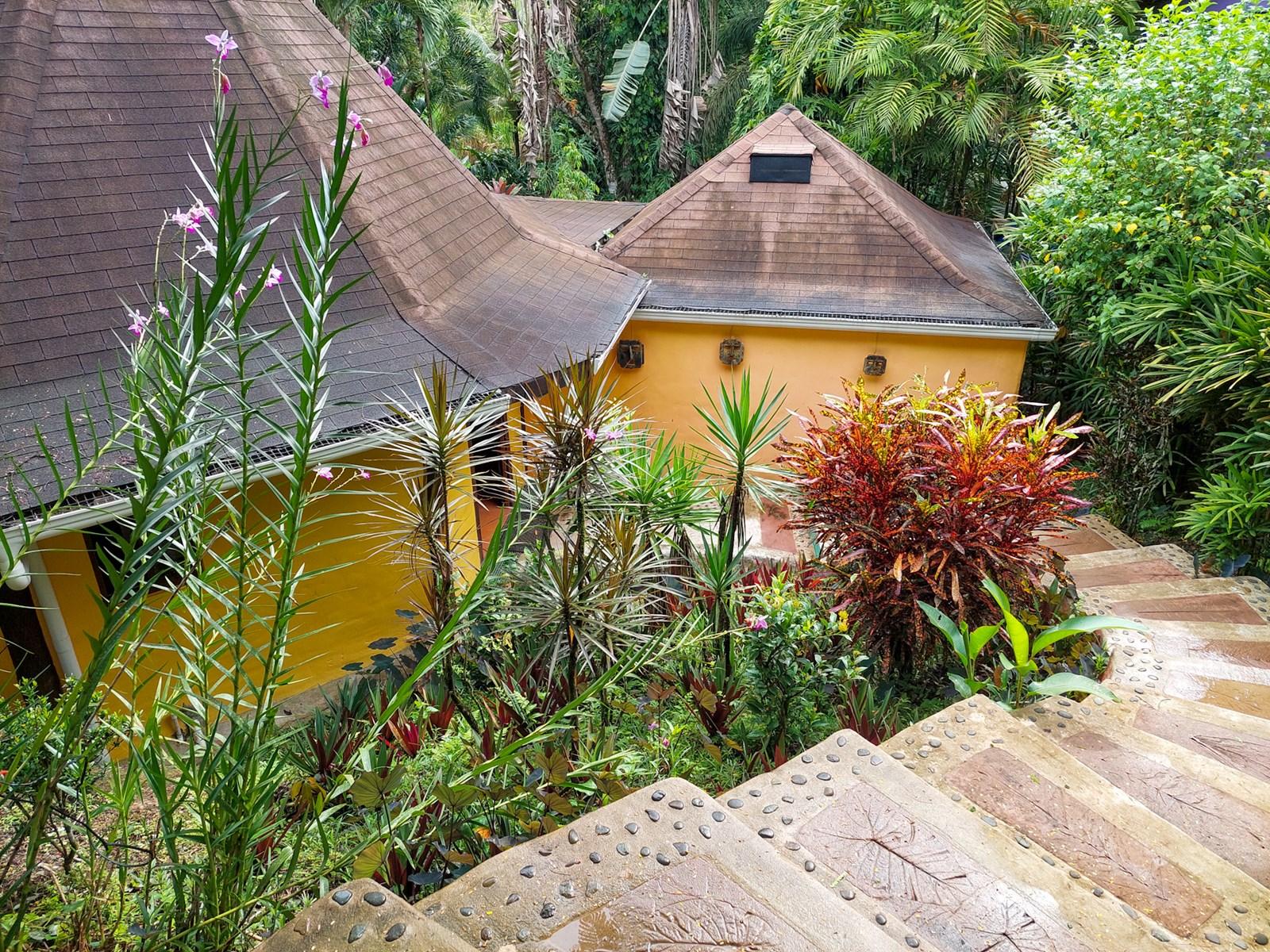 Spacious Villa in Botanical Garden Bocas del Toro Panama