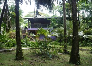 BEAUTIFUL RAIN FOREST HOME & BOTANICAL GARDEN BOCAS DEL TORO