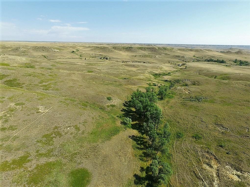 Pasture and Tillable Acerage for Sale - Glendive, MT