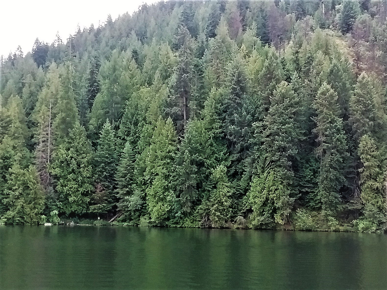 North Idaho Lake Waterfront Land For Sale on Twin Lakes