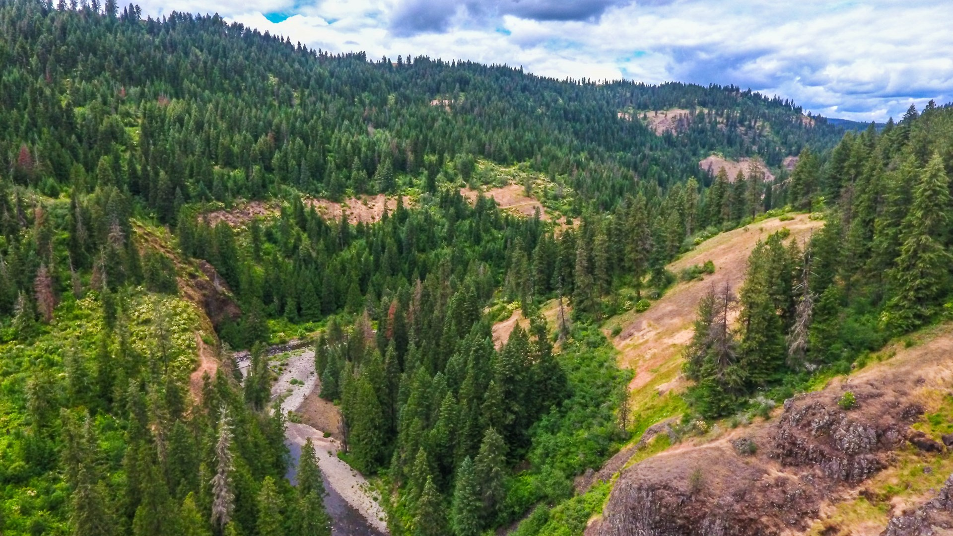 Recreation Property w/River Frontage For Sale near Deary, Id