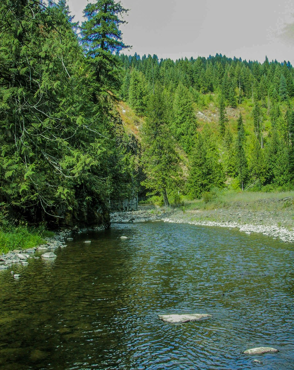Deary Idaho Elk Canyon River Ranch For Sale Timbered Land