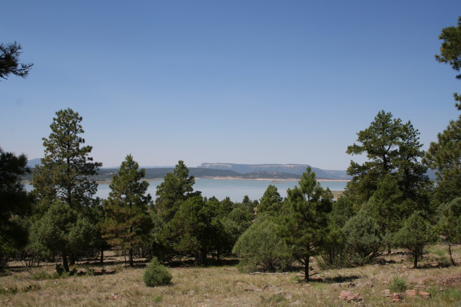 Amazing Lot looking over Heron Lake For Sale In Northern NM