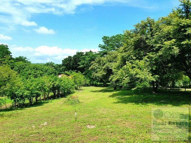 Country Lot in Cabuya Chame for sale in Panama